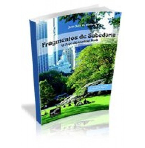 FRAGMENTOS DE SABEDORIA- O Anjo do Central Park